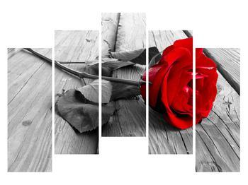 Obraz červenej ruže (K011138K12590)