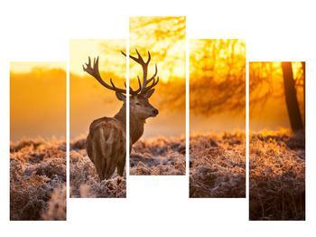 Obraz jeleňa (K011281K12590)
