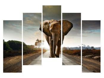 Tablou cu elefant (K012479K12590)