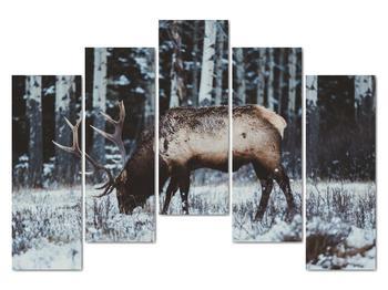 Obraz - jeleň v zime (V020179V12590)
