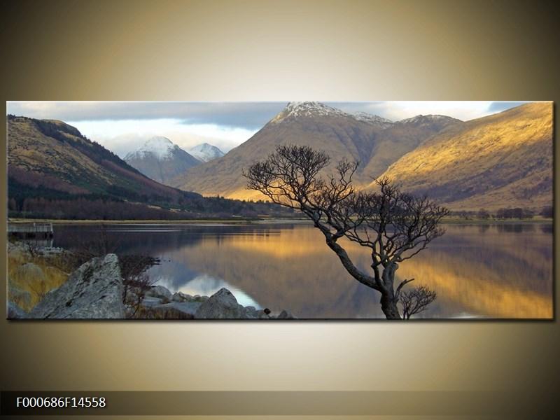 Obraz hor u jezera (F000686F14558)