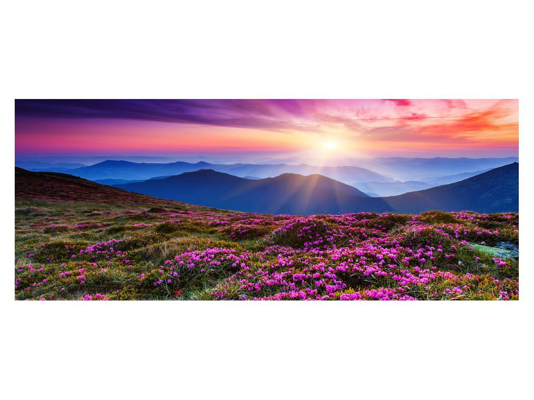 Slika planinskog rascvijetalog krajolika (K011322K14558)