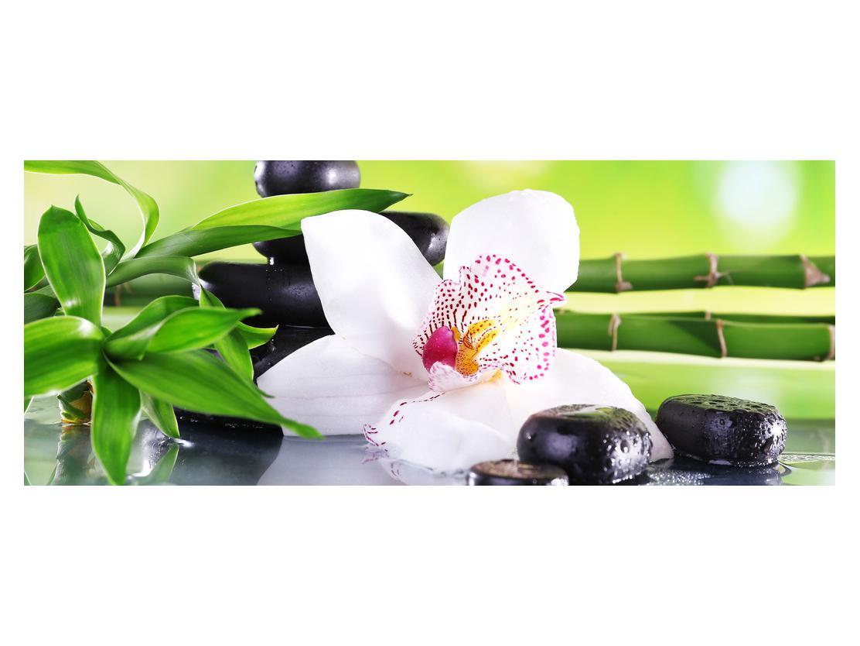 Slika orhideje (K011995K14558)