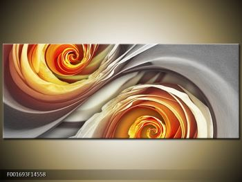 Abstraktní obraz - spirál (F001693F14558)