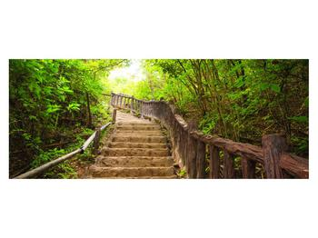 Tablou cu trepte ducând prin peisaj (K011329K14558)