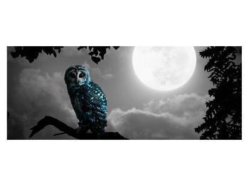 Tablou cu bufnița nocturnă (K012185K14558)