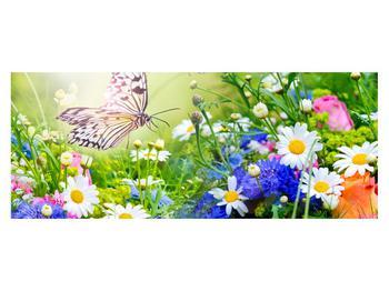 Obraz letných kvetov s motýľom (K012220K14558)