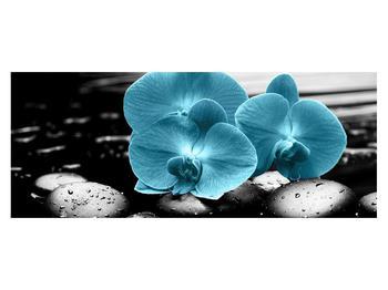 Tablou cu flori de orhidee albastre (K012398K14558)