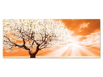 Oranžový obraz stromu (V020095V14558)