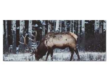 Obraz - jeleň v zime (V020179V14558)