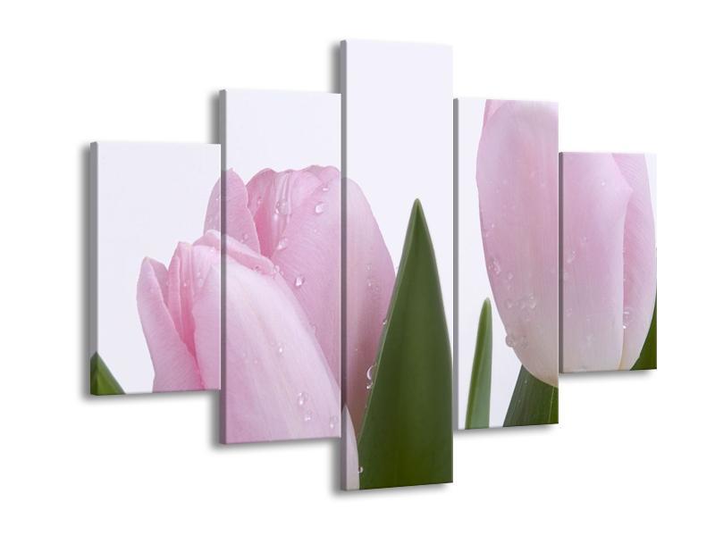 Obraz růžových tulipánů (F000389F150105)