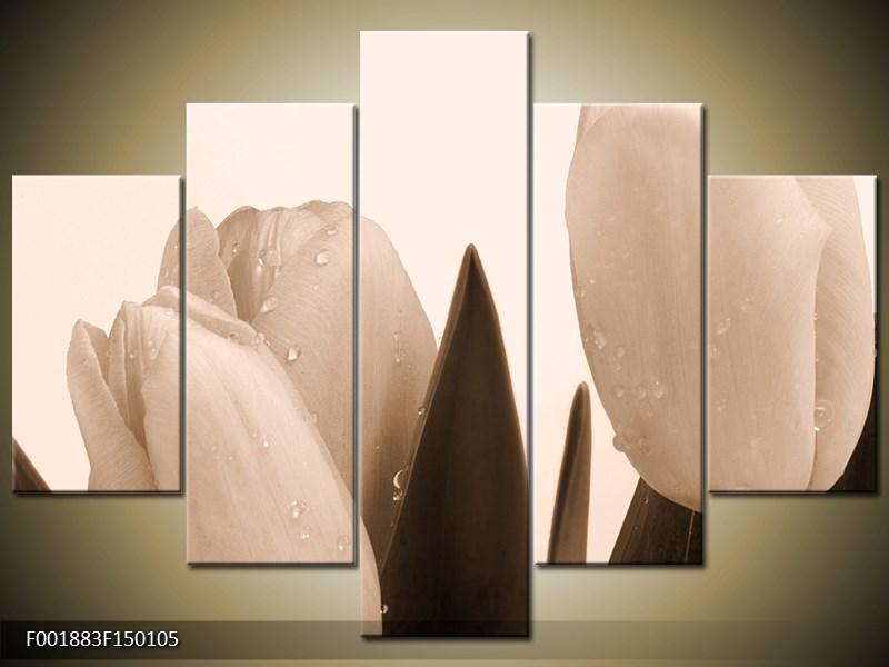 Krásný obraz tulipánů (F001883F150105)