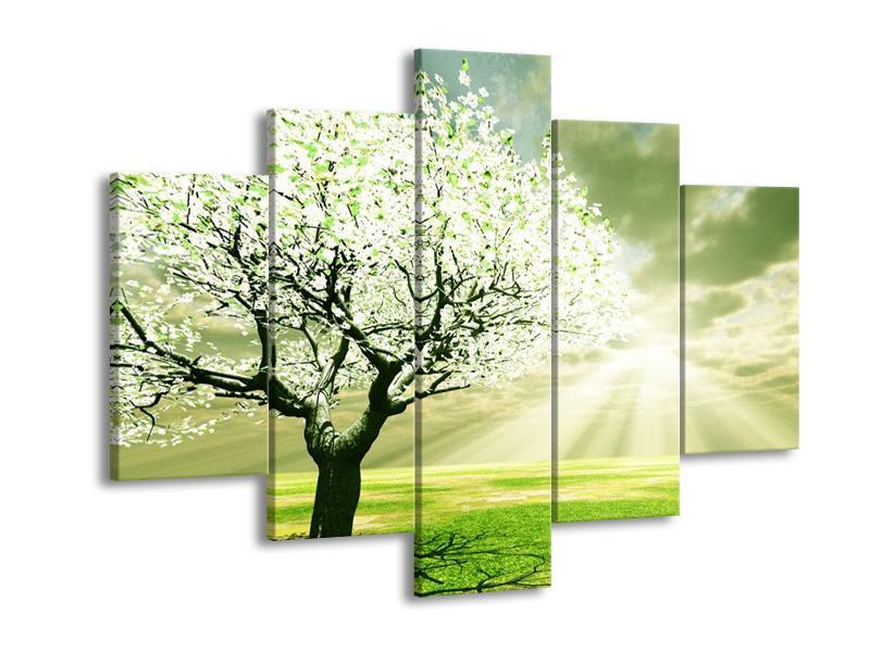 Obraz stromu na jaře (F002291F150105)