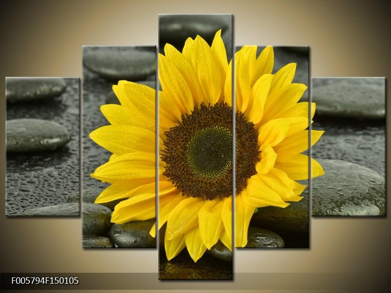 Moderní obraz F005794F150105 (F005794F150105)