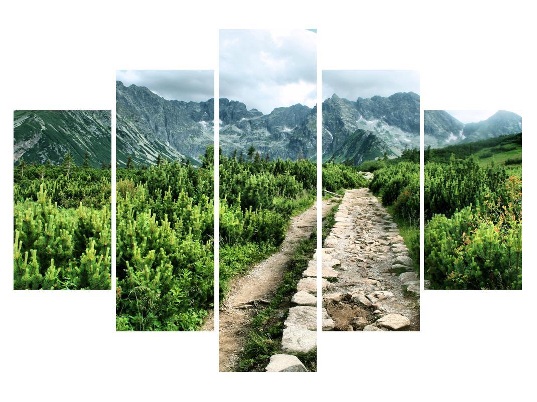 Slika planinskog krajolika (K010100K150105)