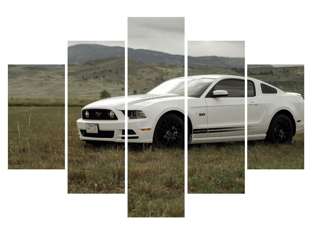 Slika automobila (K010907K150105)