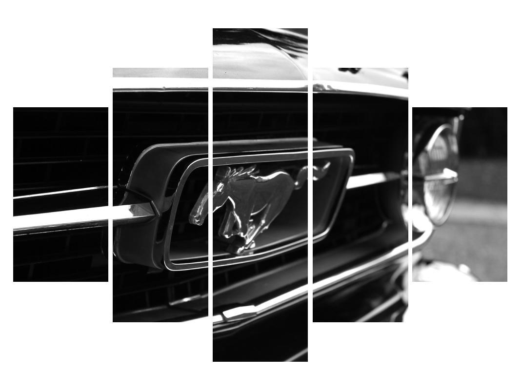 Detaljna slika automobila Mustang (K010943K150105)