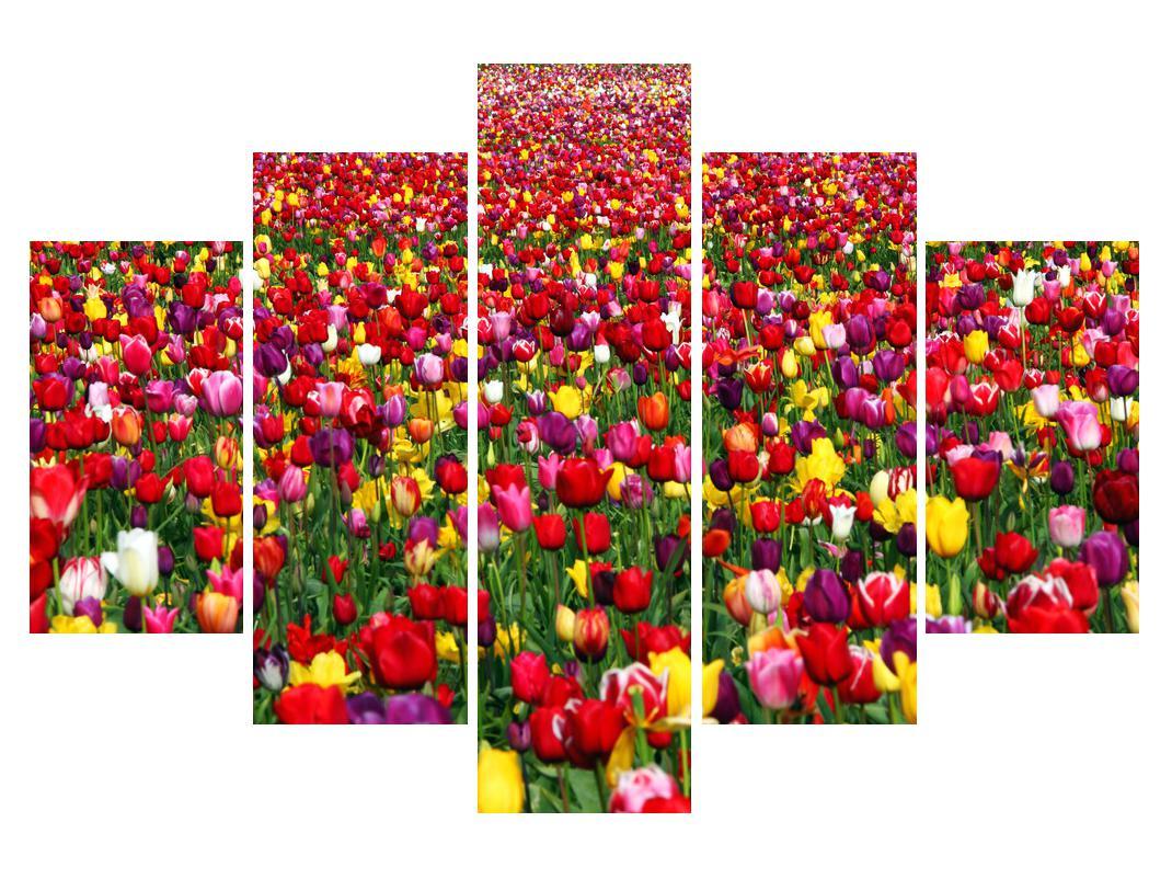 Moderna slika K010971K150105 (K010971K150105)