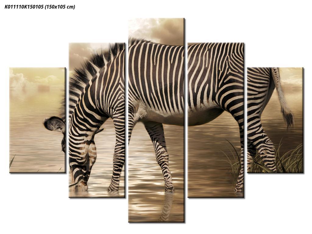 Slika zebre (K011110K150105)