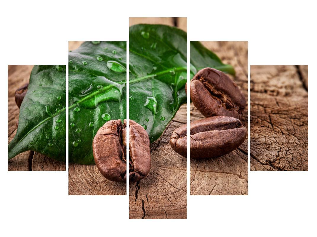 Slika zrna kave (K011132K150105)