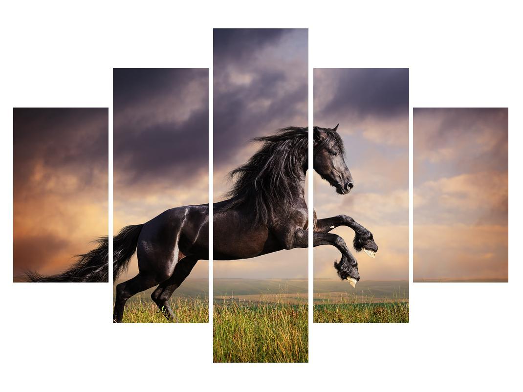 Slika konja (K011149K150105)