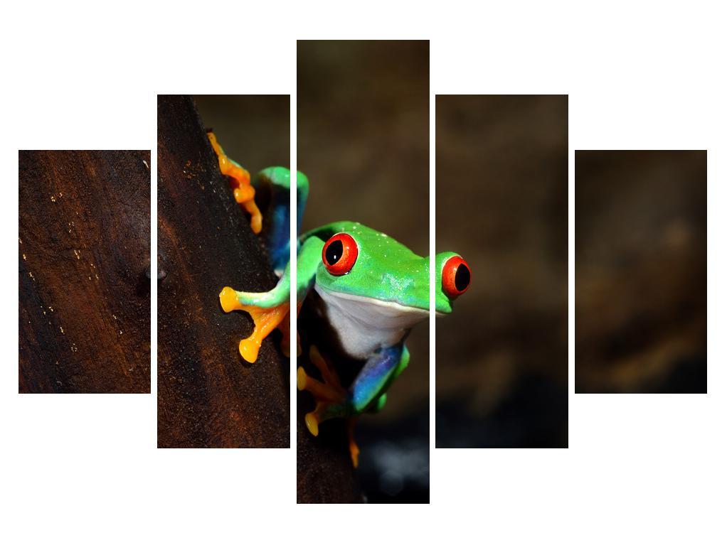 Moderna slika K011209K150105 (K011209K150105)