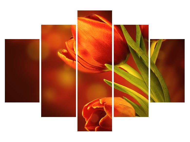 Moderna slika K011256K150105 (K011256K150105)