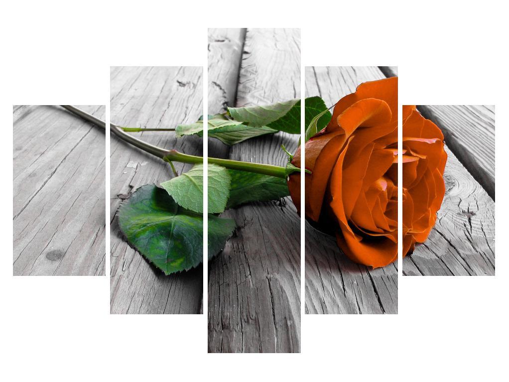 Moderna slika K011309K150105 (K011309K150105)