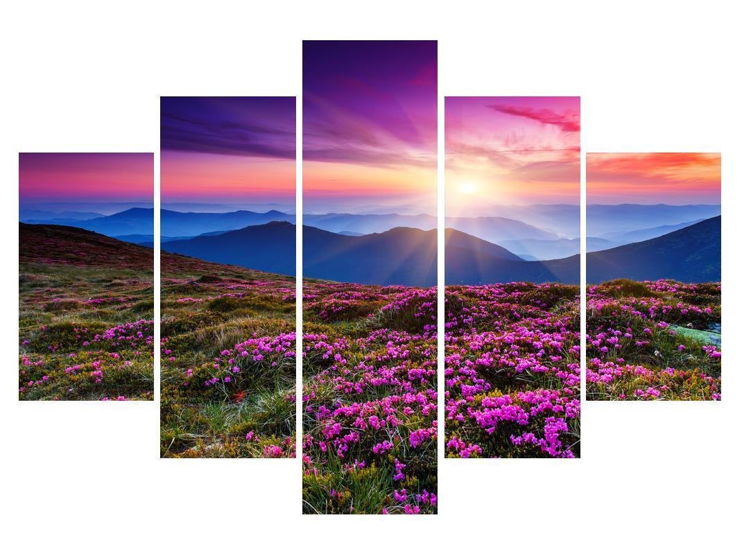 Slika gorske cvetoče pokrajine (K011322K150105)