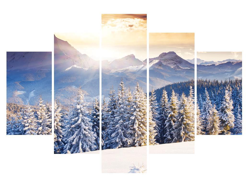 Zimska slika šumskog planinskog krajolika (K011331K150105)