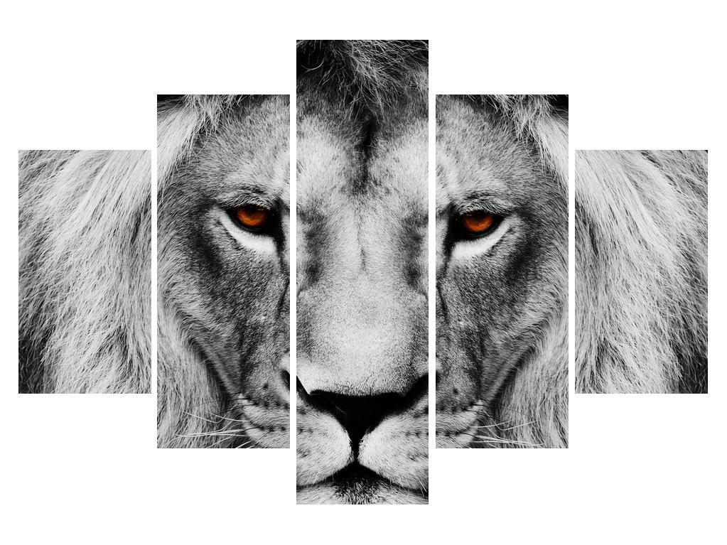 Černobílý obraz lva (K011390K150105)