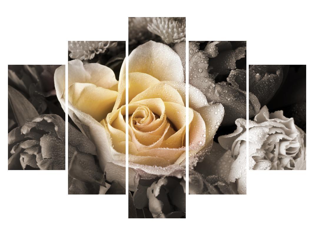 Slika vrtnice (K011746K150105)