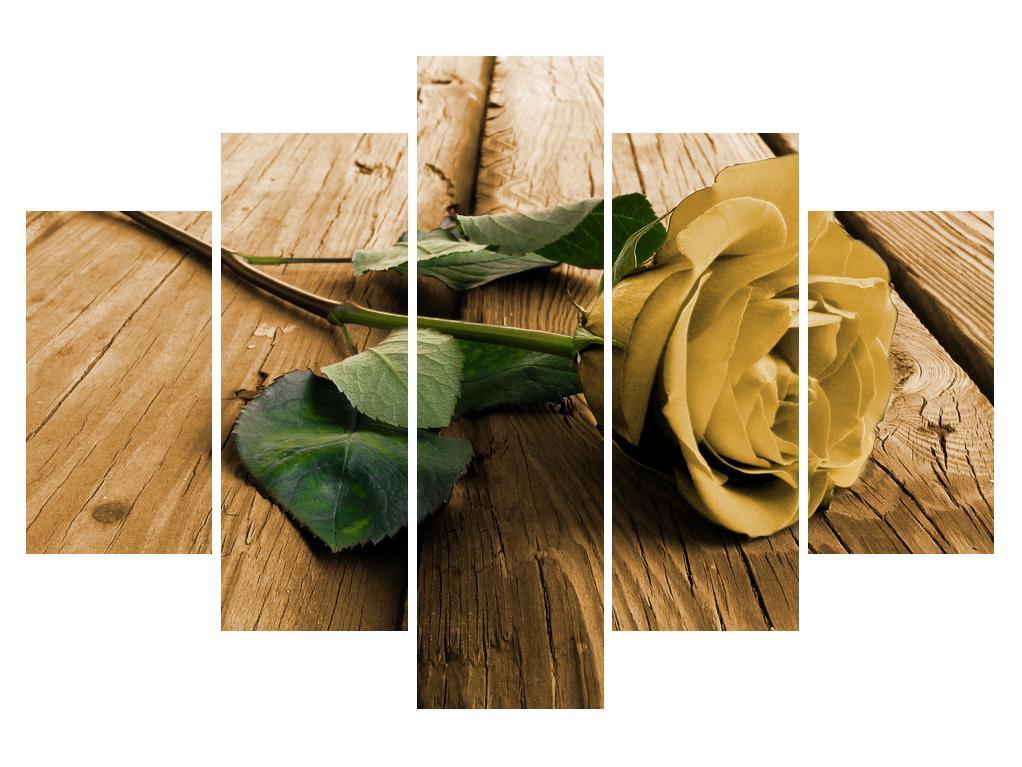 Slika vrtnice (K011809K150105)