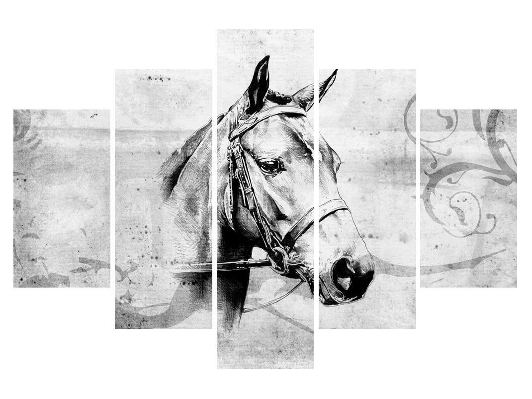 Slika - portret konja (K011919K150105)