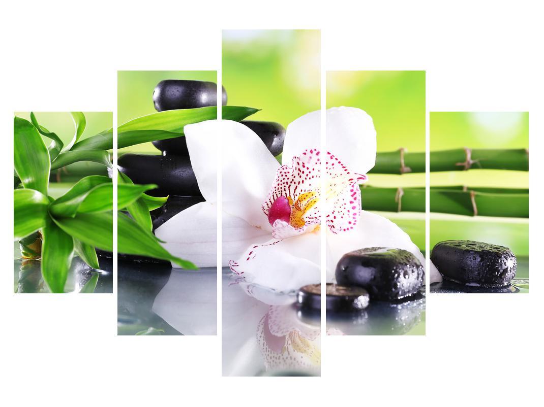 Slika orhideje (K011995K150105)