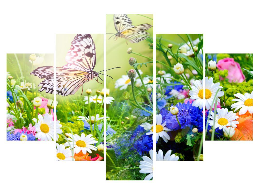 Slika poletnih cvetov z metuljem (K012220K150105)
