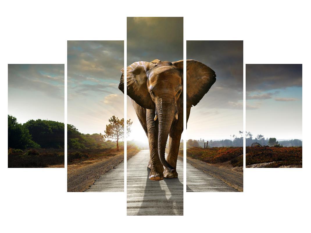 Slika slona (K012479K150105)