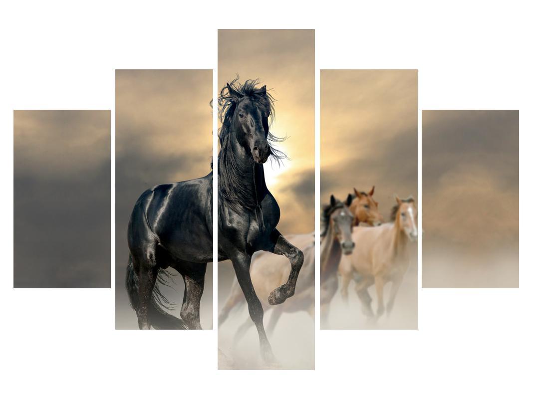 Slika konja (K012491K150105)