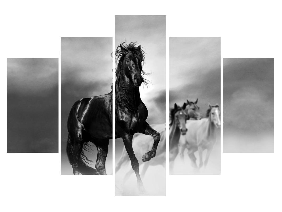 Slika konja (K012501K150105)
