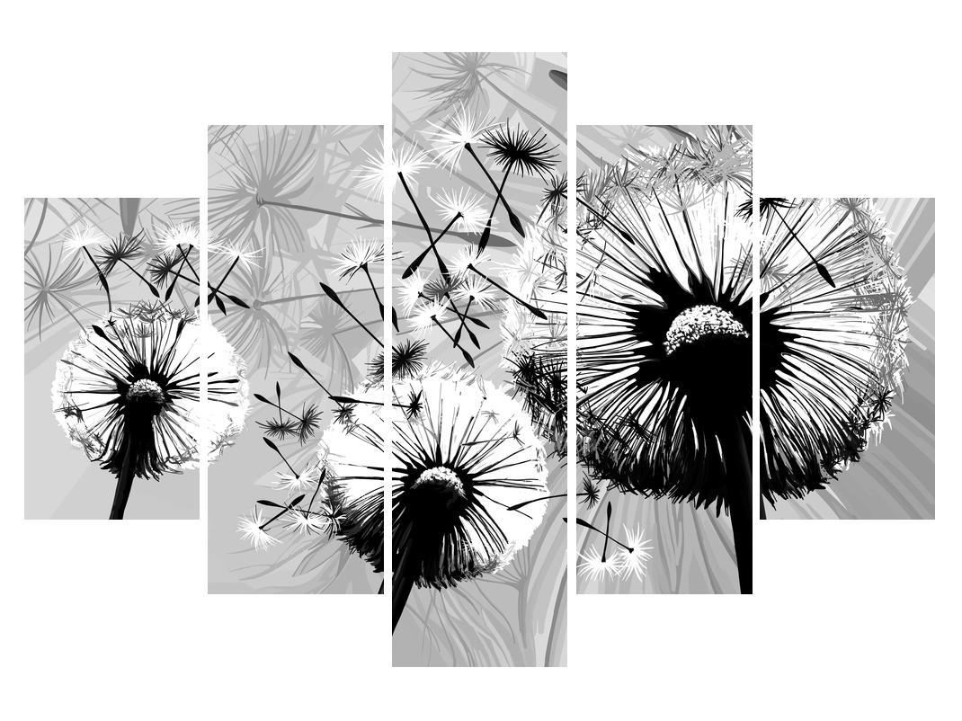Moderní obraz černobílých pampelišek (K014188K150105)