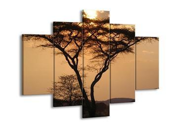 Obraz stromu v krajině (F000007F150105)