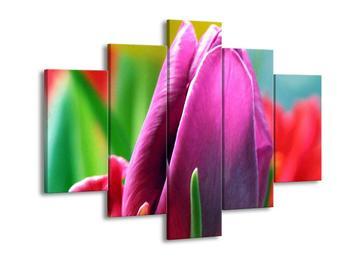 Obraz růžového tulipánu (F000008F150105)
