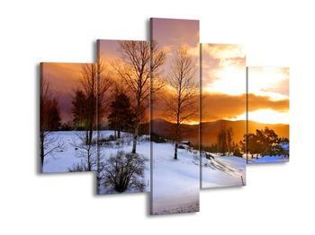 Obraz zimní krajiny (F000031F150105)