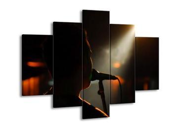 Obraz siluety zpěváka (F000041F150105)