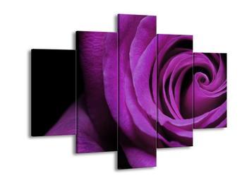 Obraz růže (F000391F150105)