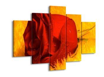 Obraz červené růže (F000394F150105)