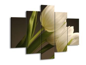 Obraz světlých tulipánů (F000405F150105)