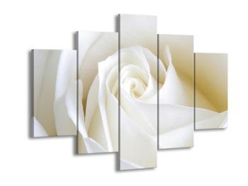 Obraz bílé růže (F000471F150105)