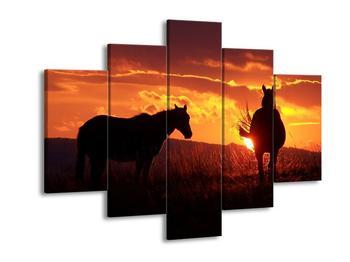 Obraz koní (F000475F150105)