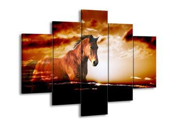 Obraz koně (F000483F150105)
